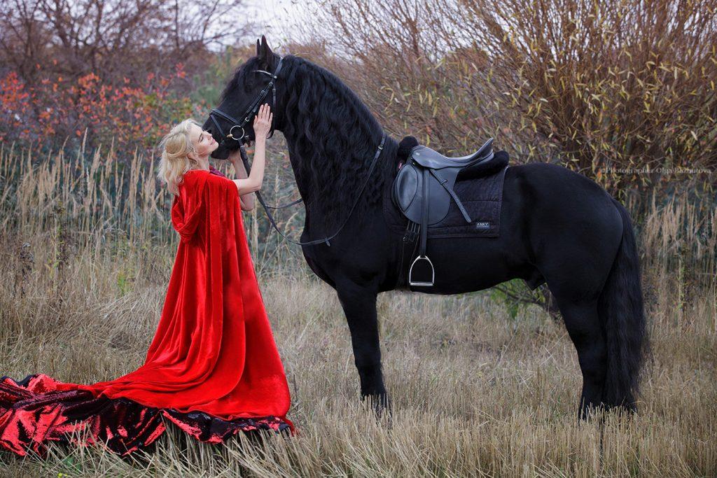 Фотосессия с лошадью идеи