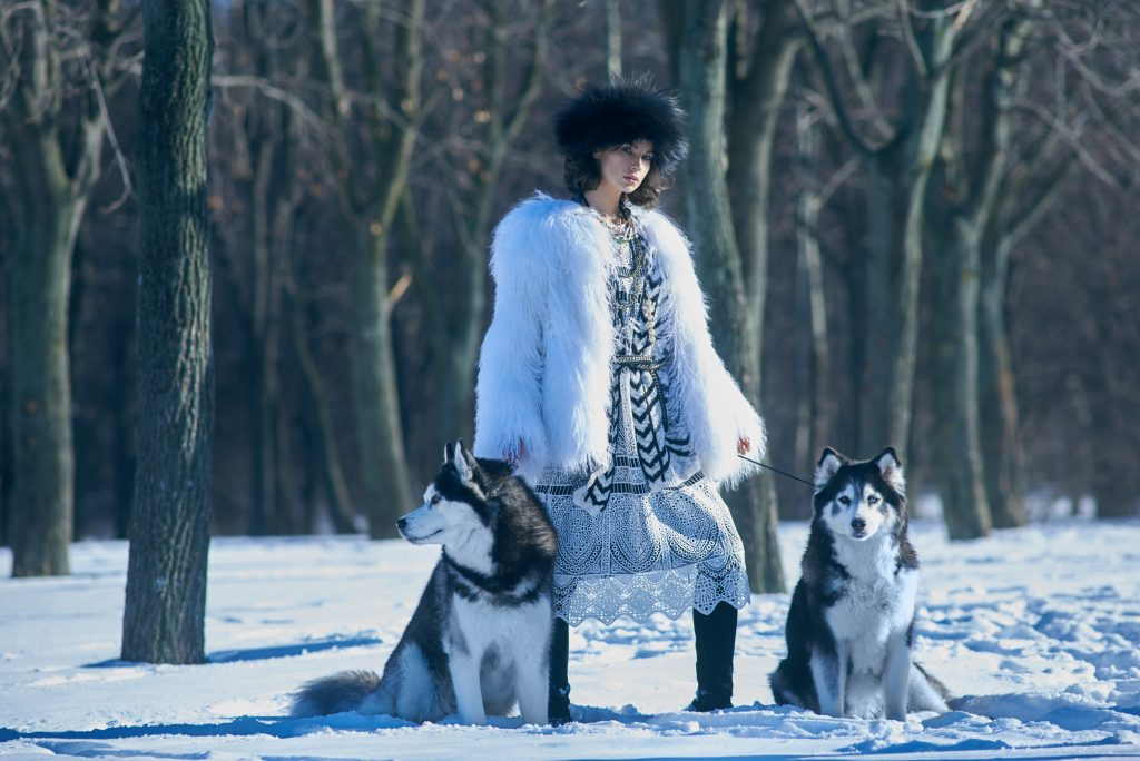 Фотосессия с хасками зимой